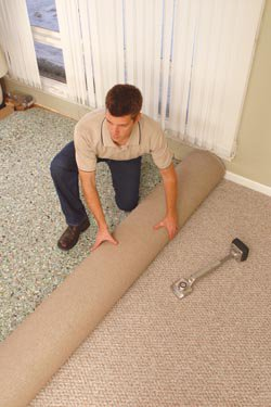Carpeting and Carpet Short Rolls at Alexandria Carpet One