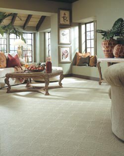 Alexandria Carpet Flooring Sales, Service and Installation